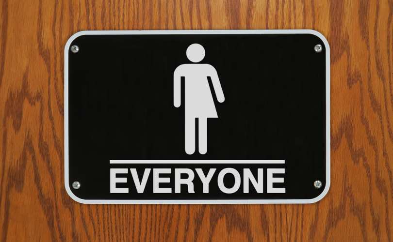 Everyone_gender_equality_810_500_55_s_c1