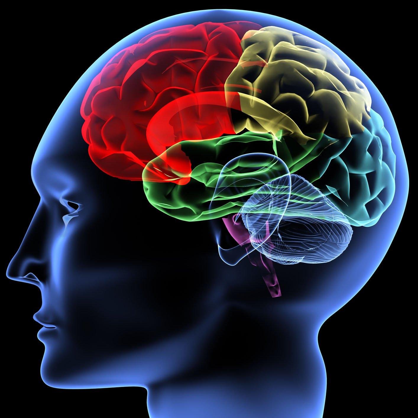 Photo of O nouă tehnologie ar putea stimula creierul pacienților cu nivel de conștiență foarte redus