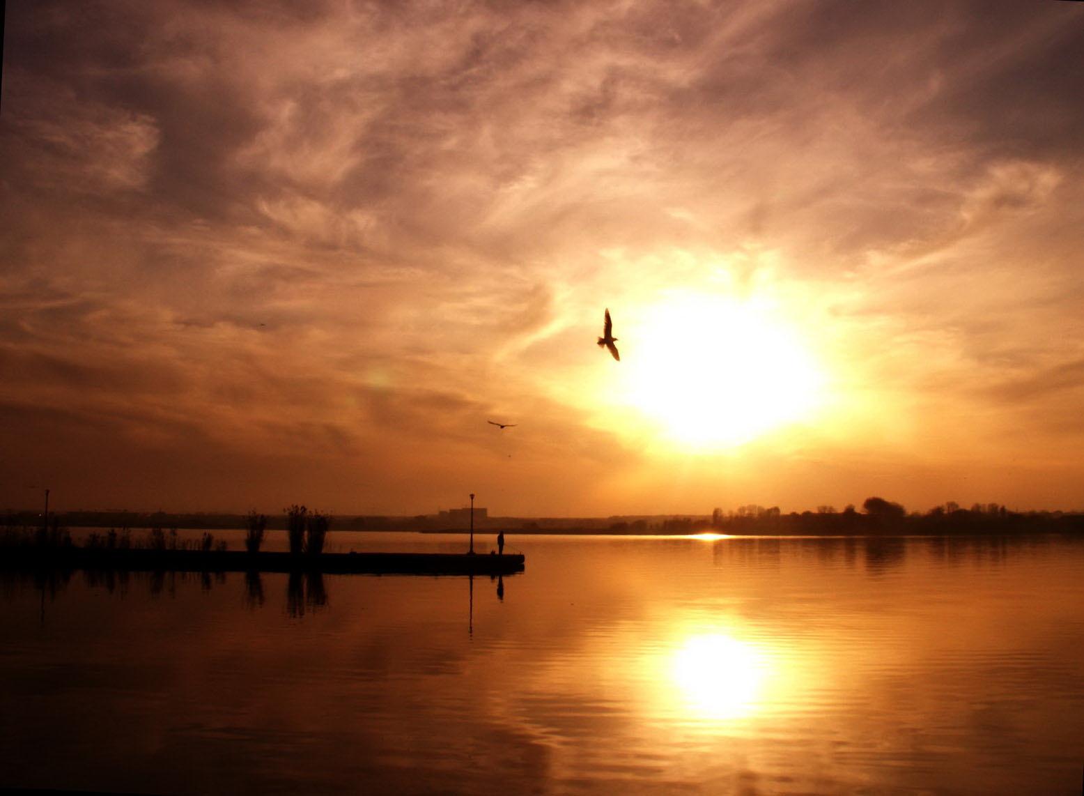 Photo of Cultivă lumina tainică din tine…