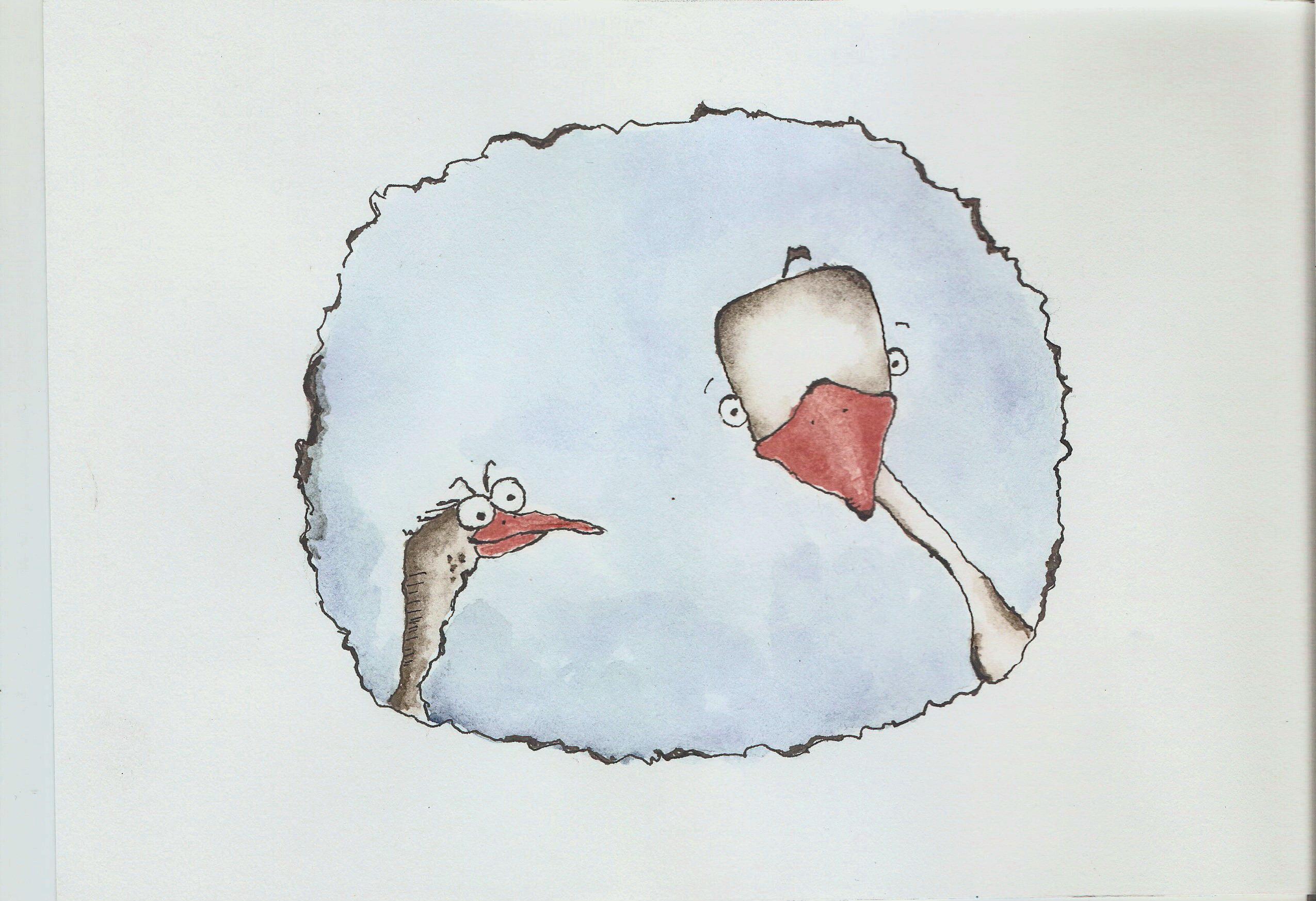 Photo of Cucul Cuc și gâscanul cu cap pătrat / Povești pentru trezit copiii 1