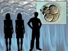 Photo of Copiii cu material genetic de la trei părinți: un experiment lipsit de etică