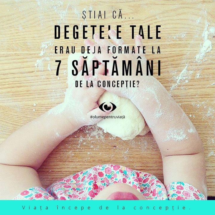 Photo of CELE MAI FRUMOASE FOTOGRAFII pro-viață: SUSȚINE VIAȚA! Dă Like, urmărește și distribuie pe Facebook mesajele create de O Lume Pentru Viață!