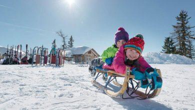 Photo of Austria introduce facilități fiscale substanțiale pentru familiile cu copii