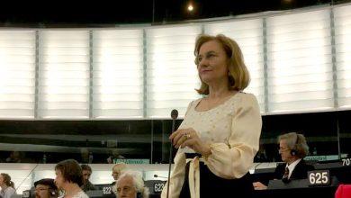 """Photo of Europarlamentarul Maria Grapini despre cazul Smicală: """"Dreptul copiilor care doresc să stea cu părinții trebuie să primeze"""""""