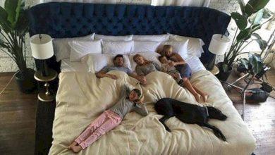 Photo of O firmă a inventat The Family Bed, patul pentru familii numeroase