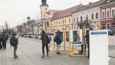 """Photo of Luna pentru Viață 2018 la Cluj. Expoziția stradală """"Obiectiv cu vedere spre Viață"""""""
