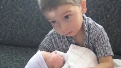 Photo of VIDEO adorabil: Dragoste frățească. Reacția unor copii la vederea noilor membri ai familiei