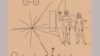 Photo of Sonda Pioneer trimisă în 1972 în spațiu ne-ar reaminti acum cartea de vizită a umanității: BĂRBAT + FEMEIE
