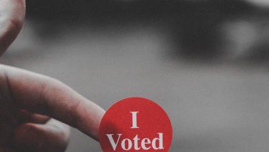 Photo of Ce a avut de spus un român din diaspora observatorului USR la secția de votare