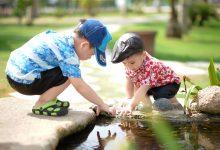 Photo of Copiii trebuie să învețe să aibă grijă de ceilalți
