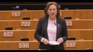 Photo of Maria Grapini, discurs în Parlamentul European despre Camelia Smicală și copiii ei