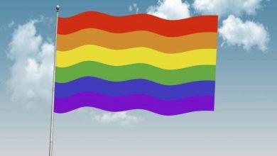 Photo of Partidul Verzilor din Australia cere înlocuirea programului educațional desfășurat în școli prin intermediul clericilor, cu programe care promovează ideologia LGBTQ