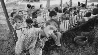 Photo of Când a postat articolul despre copiii orfani și restrângerea avortului în România comunistă, Foreign Policy a ales să mintă