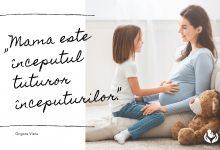 Photo of #LPV2020AcasaOnline Pro-Vita Iași realizează bannere pro-viață personalizate